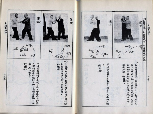 A Commoner's Explanation of Tai Ji Quan 03