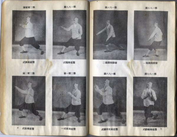 The Art of Tai Ji Quan 02